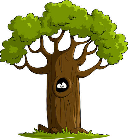 cartoon trees: A tree on a white background, vector