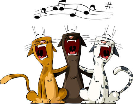 sings: Three cat on a white background, vector illustration