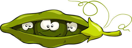 in peas: Cartoon pea pod looks out, vector illustration Illustration