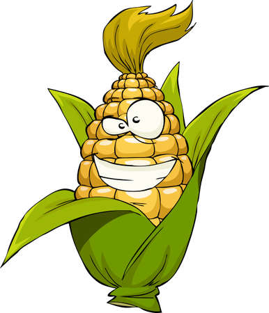 husk: Corn on a white background, vector illustration