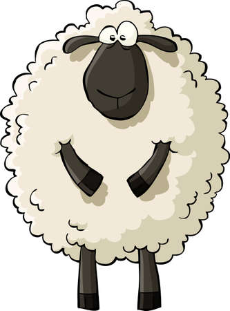 cartoon sheep: Sheep on a white background vector illustration
