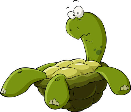 turtle isolated: Cartoon turtle on the back vector illustration