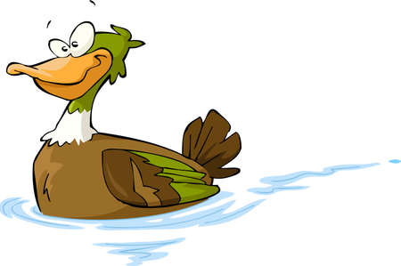 duck: Floating duck on a white background illustration Illustration