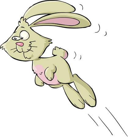 salti: Bunny su uno sfondo bianco Vettoriali