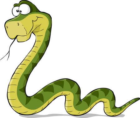 serpiente caricatura: Serpiente en un fondo blanco