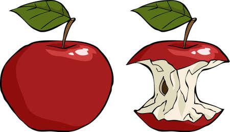 apple core: Apple and apple core cartoon vector illustration Illustration