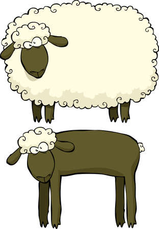 cartoon sheep: Two sheep on a white background illustration