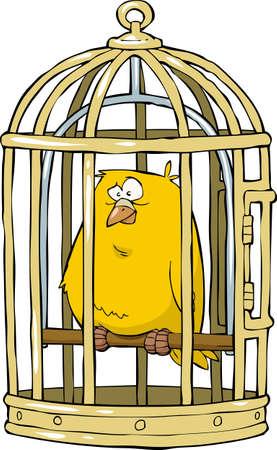 pajaro dibujo: Canario en una ilustraci�n jaula de p�jaros Vectores