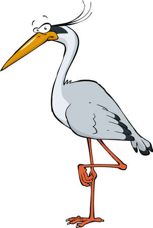 Heron on a white background  Vector