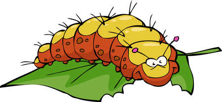 centipede: The caterpillar eats leaf on white background vector illustration