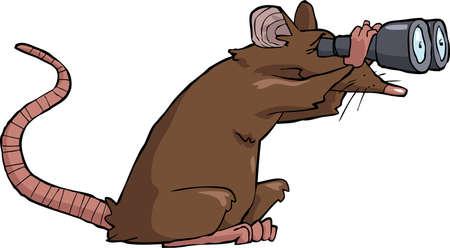 rata: Rata de dibujos animados mirando a través de binoculares ilustración vectorial Vectores