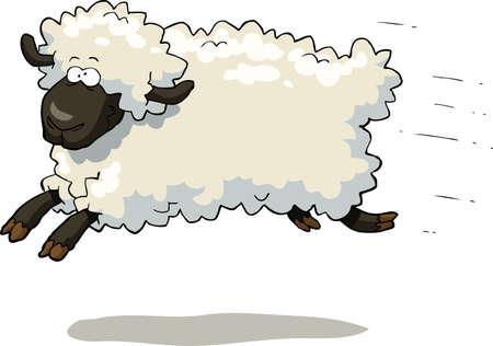 ovejas bebes: Galopando ovejas sobre un fondo blanco ilustración vectorial
