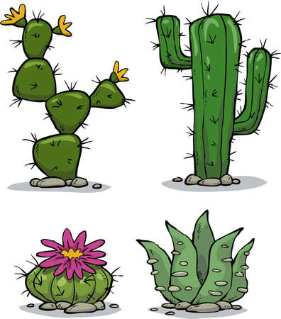 Cactus collection on a white background vector illustration Çizim