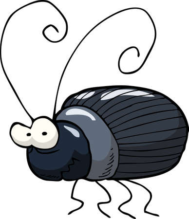 bug cartoon: Black beetle on a white background vector illustration Illustration