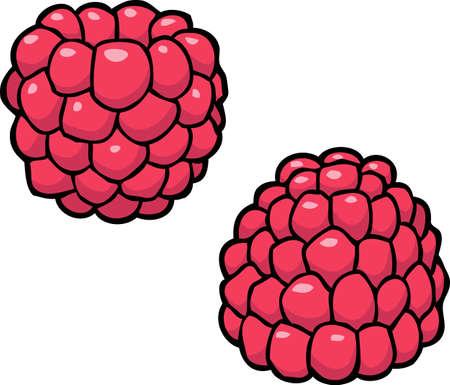 Cartoon doodle raspberry on a white background vector illustration Illustration