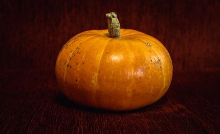 burgundy background: Big orange pumpkin on a dark burgundy background
