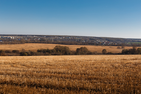 feld: The Sloping Yellow Feld of Wheat. Landscape, Nature, Agriculture
