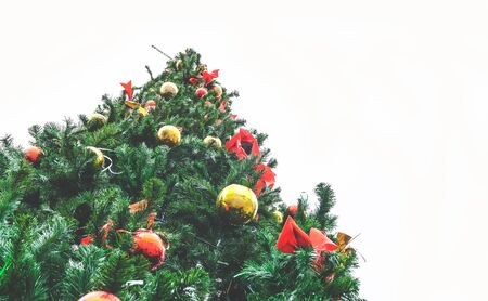 christma: large outdoor Christmas tree against a white sky view from below Stock Photo