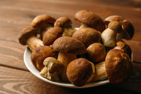 Plate with Porcini Mushrooms on wooden background, selective focus