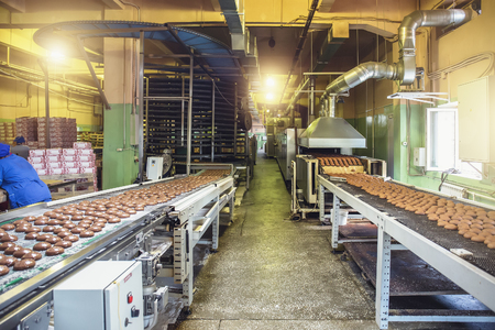 Automated production line and conveyor belt at modern bakery factory interior. Machines and equipment for baking confectionery crackers, cookies and biscuit. Industrial food production