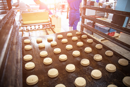 Trays with cookies from dough into special stand for cooking in stove on bakery factory. Food industry, cookie production, toned