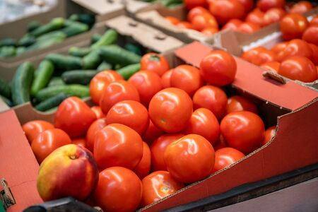Fresh red organic tomatoes and other vegetables in farmers market or supermarket shelf, healthy food, selective focus Reklamní fotografie
