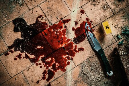 Crime scene with knife marked with number in blood of victim on floor. Investigation of cruel murder concept Reklamní fotografie