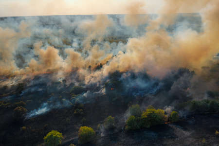 Wildfire aerial view. Fire and smoke. Burning forest. Dry grass and trees burns. Stock Photo