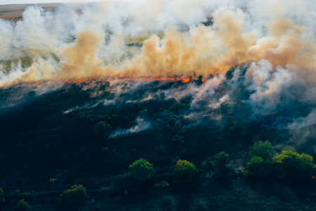 Aerial view smoke clouds of wild fire. Fire in forest spreads, natural disaster.