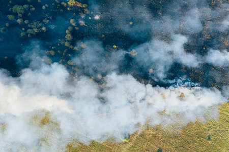 Aerial view smoke clouds of wild fire. Fire in forest spreads, natural disaster. Dry grass and trees burning. Climate change concept. Stock Photo