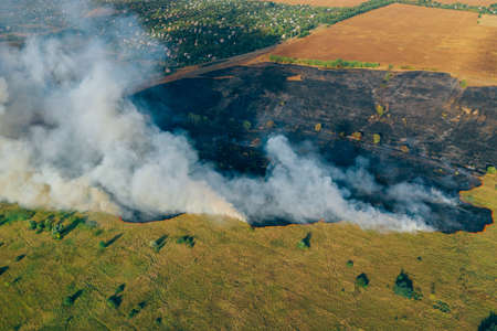 Clouds of smoke above dry burning field, natural disaster wildfire. Burning nature with fire, aerial view. Stock Photo