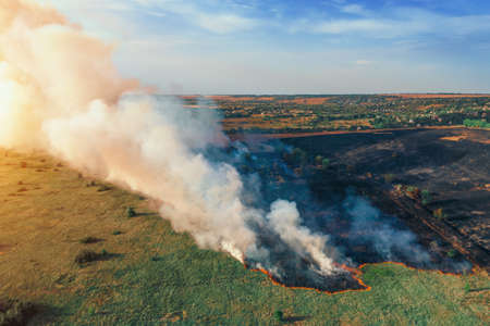 Dry grass burns, natural disaster. Forest fire aerial view. Big clouds of smoke from burning nature meadow with trees.