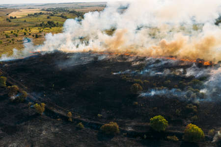 Forest fire aerial view, wildfire after dry summer season, burning nature in Russia. 免版税图像