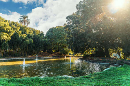 Beautiful European green park in Villa Torlonia in Rome, Italy with water pond, trees and lawns. 版權商用圖片