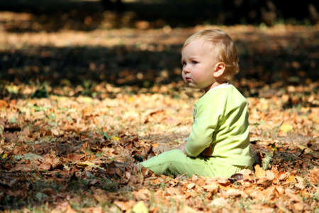 Little boy sits on a leafs Stock Photo - 5596176