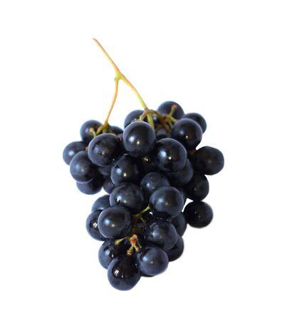 Una vite di uva blu isolata nel bianco Archivio Fotografico