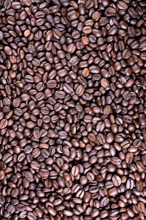 Many brown roasted coffee beans at background photo