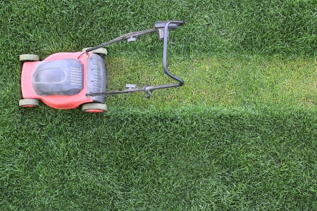 mower: Grass cutter cuts the green  lawn Stock Photo