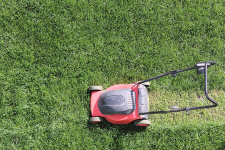 Grass cutter cuts the green  lawn Stock Photo