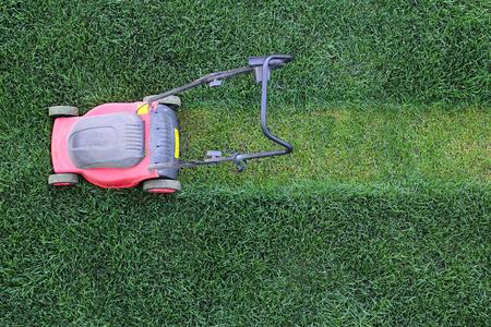 Taglio erba taglia il prato verde