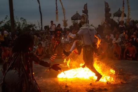 Traditional dance Kechak at Uluwatu Temple with fire. White monkey