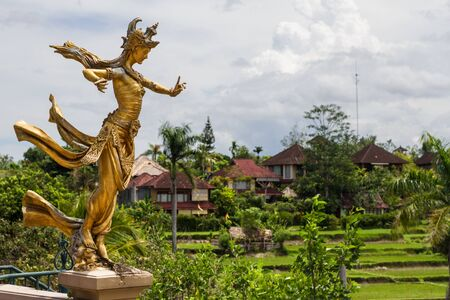 Statue on the roof, rice fields and houses in the background photo