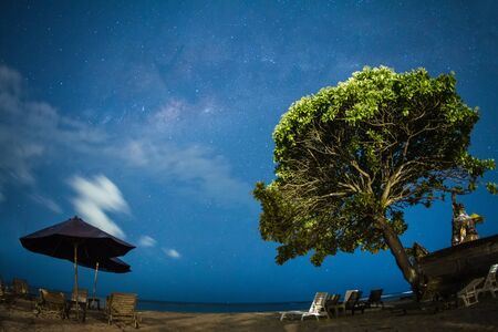 Tree crown into the starry night on the beach with blue sky, beach and sun beds photo