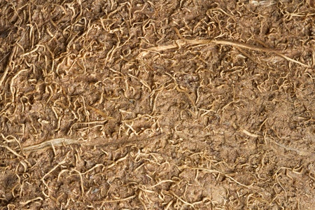 The texture of brown coconut fibers with high-resolution Stock Photo - 19187045