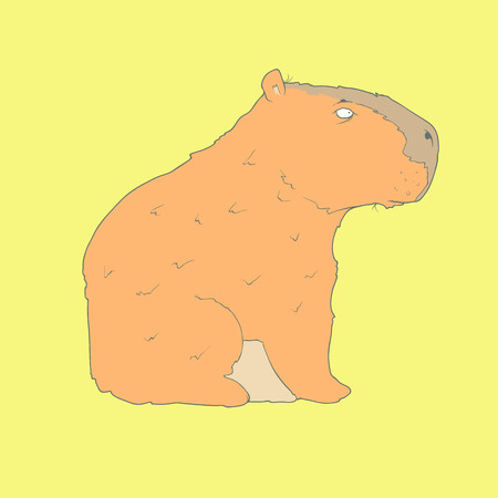 zoo cartoon: Flat hand drawn icon of a cute capybara. Animal on yellow background. Ideal to use for avatars, decorations, greeting cards, invitings or web design Illustration
