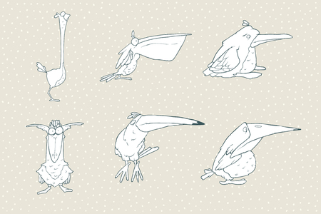 Set of cute cartoon bird isolated on white background. animal illustration. Child fun pattern icon. Pelican, beak, toucan, parrot, crow, raven, penguin, ostrich