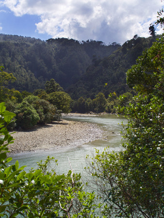 River bends and curves through forested wilderness in New Zealand.