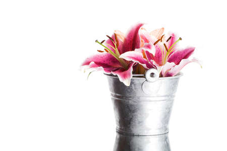 image of some lily flowers isolated on white background in a vase photo