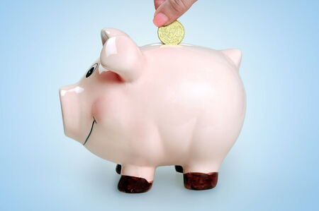 Put money in piggy bank  photo