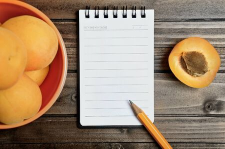 apricot kernel: Orange bowl with apricots fruit and notepad